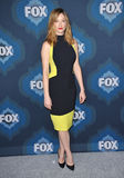 Judy Greer Stockbild