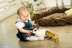 Juegan a la niña feliz con un conejito y los anadones de pascua blanco mullido lindo fotografía de archivo libre de regalías