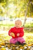 Juego alegre del bebé con las hojas amarillas en parque Imagen de archivo libre de regalías