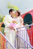Juego de la boda de pares Imágenes de archivo libres de regalías