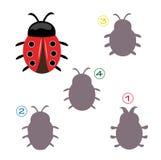 Juego de la dimensión de una variable - el ladybug Fotografía de archivo