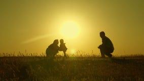 Juego de la madre y del papá con su hija en el sol el bebé feliz va de papá a la mamá familia joven en el campo con a metrajes
