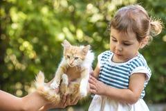 Juego de la muchacha con el gatito Foto de archivo libre de regalías
