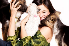 Juego de la mujer con los perros Fotos de archivo