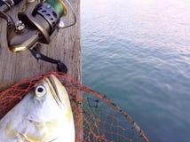 Juego de la pesca Fotos de archivo libres de regalías