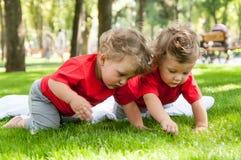 Juego de los gemelos de los niños en la hierba Foto de archivo libre de regalías