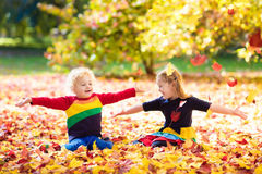 Juego de los niños en parque del otoño Niños en caída fotografía de archivo libre de regalías
