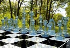 Juego de mesa del ajedrez en jardín del bosque Fotografía de archivo