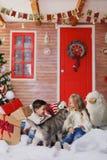 Juego de niños con los perros al lado del árbol de navidad Imágenes de archivo libres de regalías