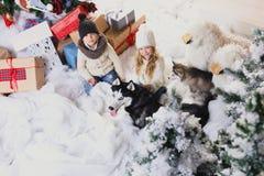 Juego de niños con los perros al lado de un árbol de navidad, visión superior Imágenes de archivo libres de regalías