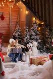 Juego de niños hermoso con el perro del perro esquimal de la raza en interior del Año Nuevo con el árbol de navidad Imagenes de archivo