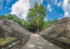 Juego de pelota, Mayan matchfält, Coba, Yucatan, Mexico Royaltyfri Bild