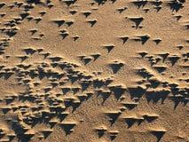 Juego de sombra en la duna de arena Fotografía de archivo libre de regalías