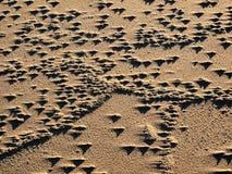 Juego de sombra en la duna de arena Fotos de archivo libres de regalías