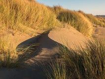 Juego de sombra en la duna de arena Foto de archivo libre de regalías