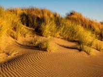 Juego de sombra en la duna de arena Imagen de archivo libre de regalías