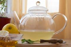 Juego de té de la infusión del Manzanilla-estragón Fotografía de archivo
