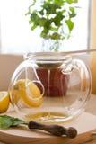 Juego de té de la infusión del Manzanilla-estragón Fotos de archivo