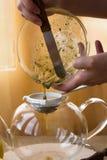 Juego de té de la infusión del Manzanilla-estragón Imagenes de archivo