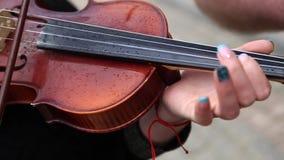 Juego del hombre en el violín en la boda metrajes