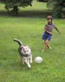 Juego del muchacho con el perro Fotografía de archivo libre de regalías