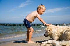 Juego del muchacho con el perro en la playa fotografía de archivo libre de regalías