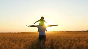 Juego del padre y del hijo en un campo de trigo en la puesta del sol, retratando un pájaro o un avión Familia feliz almacen de video