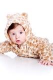 Juego del tigre del bebé que desgasta Imágenes de archivo libres de regalías