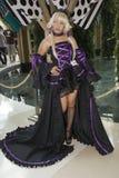 Juego del traje de Cosplay Imagen de archivo libre de regalías