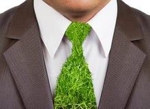 Juego formal del hombre de negocios con el lazo de la hierba Fotografía de archivo