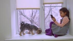 Juego online adolescente del web de la muchacha que juega para el smartphone y perro que se sienta en alféizar del travesaño de l Imagen de archivo