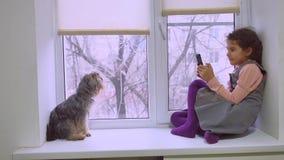 Juego online adolescente del web de la muchacha que juega para el smartphone y perro que se sienta en un alféizar del travesaño d Imagen de archivo