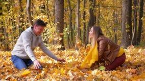 Juego sonriente feliz joven elegante de los pares en un día soleado en parque del otoño almacen de video