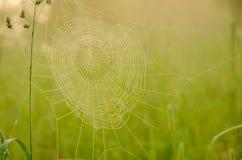 Juegos anchos del web en el viento Imagen de archivo libre de regalías