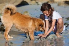 Juegos de la chica joven con su perro en la playa Fotografía de archivo
