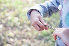 Juegos de la muchacha con las ramitas fotografía de archivo libre de regalías