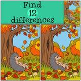 Juegos de los niños: Diferencias del hallazgo Pequeño erizo lindo Fotografía de archivo
