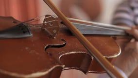 Juegos de niños en un violín Primer almacen de video