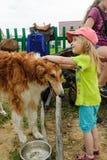 Juegos de niños lindos con el perro Foto de archivo libre de regalías