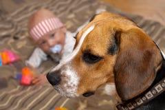 Juegos del bebé con un perro Fotos de archivo