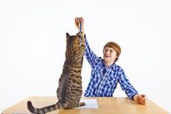 Juegos del muchacho con su gato de gato atigrado Imagenes de archivo