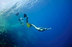 Juegos freediving divertidos en el Mar Rojo Fotos de archivo