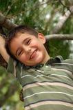 Juegos jovenes del muchacho en un árbol imágenes de archivo libres de regalías