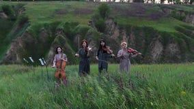 Juegos musicales femeninos del cuarteto en el prado floreciente almacen de metraje de vídeo
