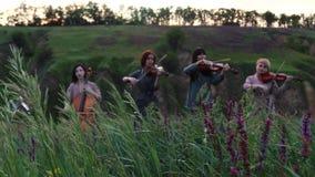 Juegos musicales femeninos del cuarteto en el prado floreciente almacen de video