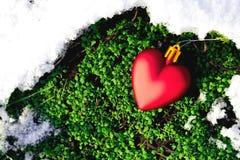Juegue el corazón que pone en el musgo de la primavera del deshielo en el bosque fotografía de archivo