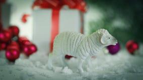 Juegue las ovejas y las cajas con los regalos en fondo de la Navidad Imagenes de archivo