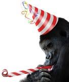 Juerguista del gorila con un sombrero del cumpleaños y un cuerno rayados del noisemaker foto de archivo