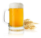 Jug of beer with wheat isolated on the white background Royalty Free Stock Photo
