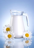 Jug fresh milk and three chamomile flowers Royalty Free Stock Photos